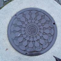 Manhole Toyama City, Тояма