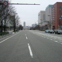 富山駅北側から駅方面の眺め, Тояма