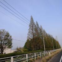 Ashikaga By-pass, Kubotacho, Ashikaga, Tochigi Prefecture 326-0324, Japan, Такефу