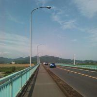渡良瀬川 川崎橋, Тсуруга
