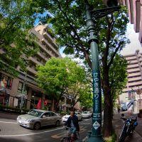 Keyaki dori street, Китакиушу
