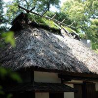 平尾山荘跡, Ногата