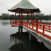 Ōhori Park, Fukuoka, Омута