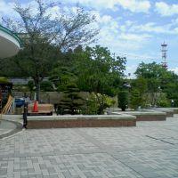 Japanese garden?, Иваки