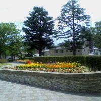 Park flower beds, Иваки