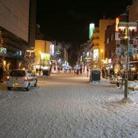 Asahikawa Winter Festival 2012, Асахигава
