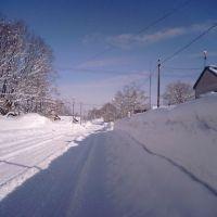 冬景色, Бибаи