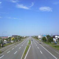 日本一の直線①, Бибаи