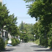 石北大通り, Китами