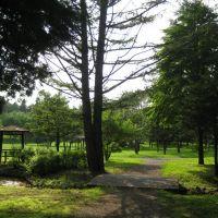 野付牛公園~夏の昼下がり, Китами