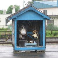 釧路駅2,3番ホーム, Куширо