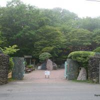 Tikurouen 竹老園東家総本店, Куширо