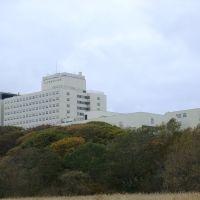 Kushiro Minicipal Hospital (釧路市立病院), Куширо