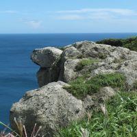 亀岩と猫岩, Муроран