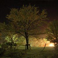 静かなる夜(Silent night), Обихиро
