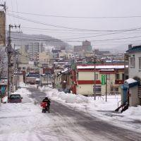 住ノ江町 Suminoe-cho, Отару