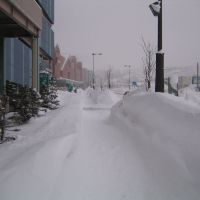 Mall near Otaru Bay, Отару