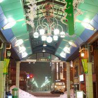 都通り商店街アーケード Miyakodori shop street arcade, Отару