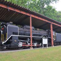 D61形蒸気機関車3号機 Type D61-3  Типа Д61-3, Румои