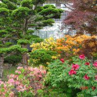 日本庭院, Саппоро