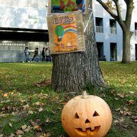 Halloween?, Саппоро