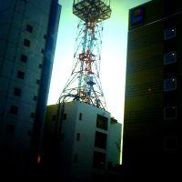 Tele-com centre In Tomakomai, Томакомаи