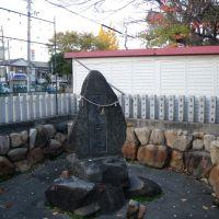 Nagasu Temman Jinja Shrine 長洲天満神社 菅公足洗之池, Амагасаки