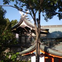 Funadume Jinja Shrine 船詰神社 御神殿, Итами