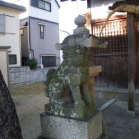 Nakakema Inari Jinja Shrine 中食満 稲荷神社 狛犬 吽形, Итами