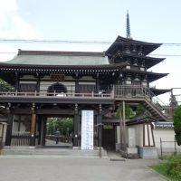 園満寺仁王門, Какогава