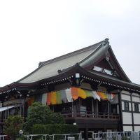 園満寺本堂, Какогава