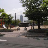 弥生公園 [2011.05], Имабари