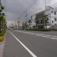 東鳥生町・衣干町 [2011.05], Имабари