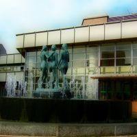 Yamagata Civic Hall 山形市民会館, Саката