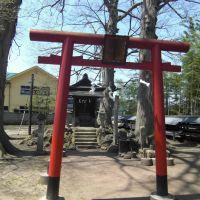 常磐稲荷神社、Tokiwa-Inari jinja shrine, Тендо