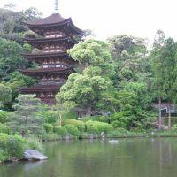 瑠璃光寺の五重塔, Ивакуни