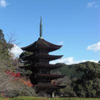 Ruriko-ji Temple/Yamaguchi, Ивакуни