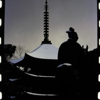 瑠璃光寺五重塔, Токуиама