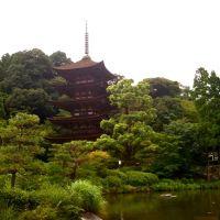 Rurikouji_Yamaguchi, Токуиама
