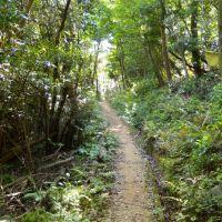 象頭山公園 気晴らしの丘 らくらくコース, Токуиама