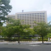 山口県庁, Токуиама