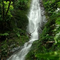 梅峯の滝, Хаги