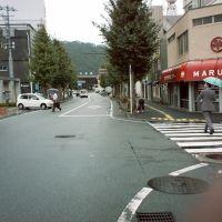 Yamaguti Station 山口駅, Хаги