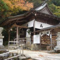 多賀神社(F), Хаги