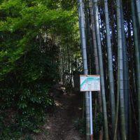 厳島神社周辺, Хофу