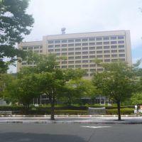 山口県庁, Хофу