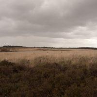 Kleine Heide, Deelerwoud, Арнхем