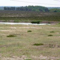 Drainagesysteem van het ecoduct, Арнхем