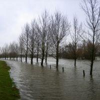 Maas bij Venlo, hoog water 10-12-2007, Венло