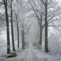 snow, horn, Керкрад